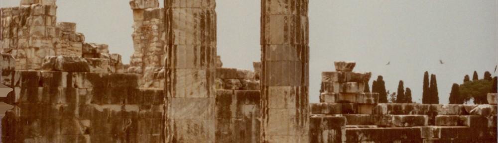 Dydima-columns-1000×288
